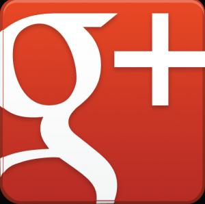 Google + Veterinarios Especialistas en Odontología Equina